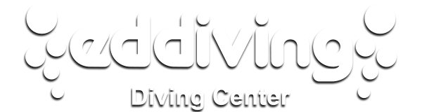 Logo - Eddiving Diving Center