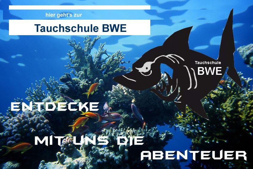 Logo - Tauchschule Bluewater Explorers